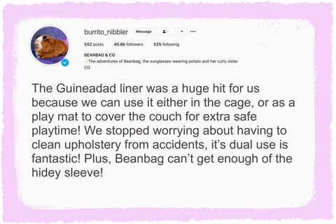 burrito_nibbler review of guineadad fleece liner the best guinea pig bedding for guinea pigs