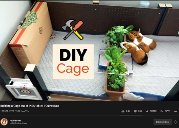 diy cage for guinea pigs and hamsters