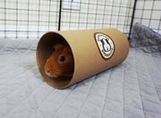 Guinea Pig inside Packaging for GuineaDad Pee Pad on top of GuineaDad Waterproof Fleece Liner 2.0