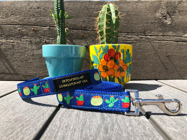 Cactus Dog Collar - Fetch Dog