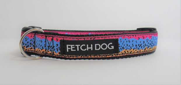 Rainbow Trout Dog Collar - Fetch Dog