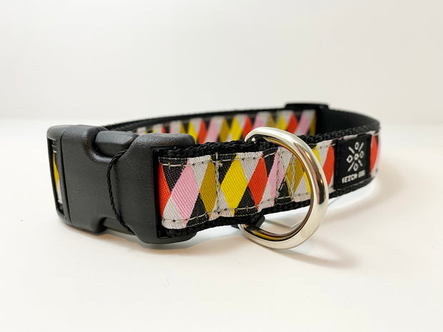 Harlequin Dog Collar