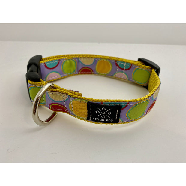 Paint Pots Dog Collar Dog Collar Fetch Dog