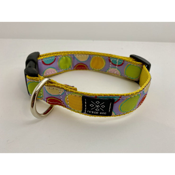 Paint Pots Dog Collar