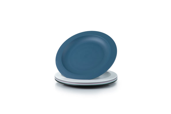 Unbreakable and Reusable Plastic Plates- Set of 6 - Amuse Home