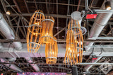 CRAFTSMAN Collection - Portunus - Wine Barrel Catch Chandelier Reversed