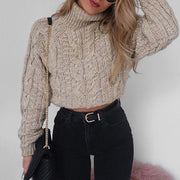 Brief Short High Collar Long Sleeve Pure Colour Sweater