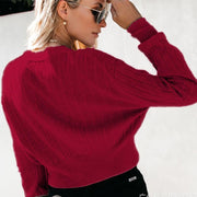 Brief V Neck Solid Colour Long Sleeve Bodycon Sweater