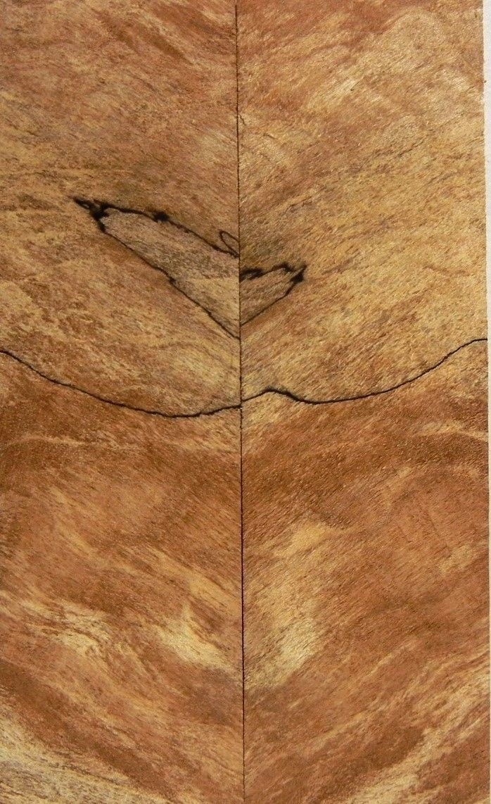 "Maple Soft Spalted Extreme (2 pc) Knife Scales 1/4"" x 1 1/2"" x 5"" - 0718 - Wood Acrylic Supply"