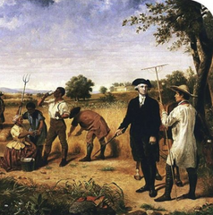 George Washington Hemp