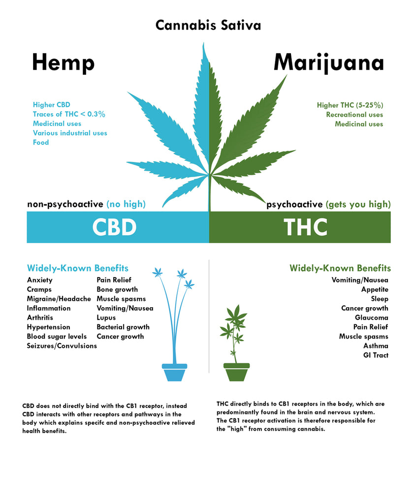 The Difference Between Hemp And Marijuana Manual Guide