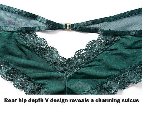 Hip depth V cut Lace Soft Briefs