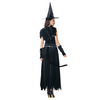 Image of Devil Witch Carnival Fancy Dress