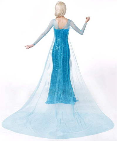 Disney Frozen costume