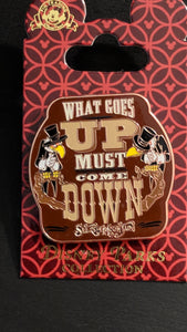 Splash Mountain What Goes Up Must Come Down Pin New on Card