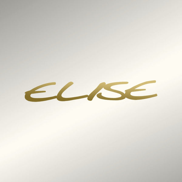 """ELISE"" replacement decal"