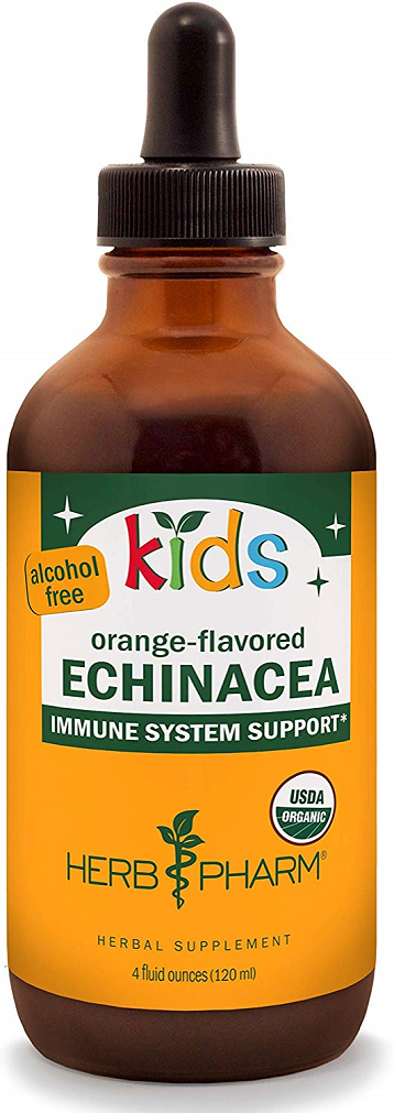 Childrens Echinacea Alcohol-Free 4 oz