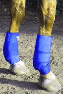 Equine Fetlock Pair - Quarter Horse Cold One