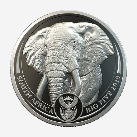 Buy the Big 5 Elephant Platinum Proof 1oz Pt 999.5  from Cheeky Mongoose