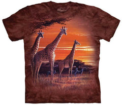 Zoo Animal T-Shirt Collection