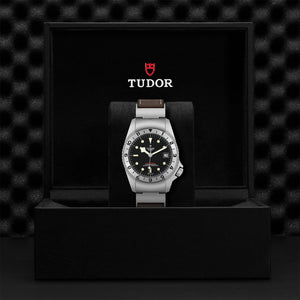 Tudor - Black Bay P01