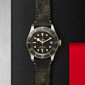 Tudor - Black Bay S & G