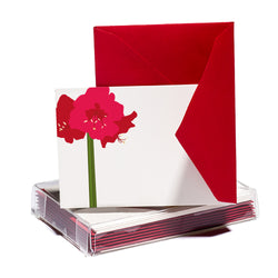 Amaryllis Tiny Card
