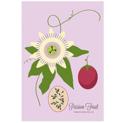 Passion Fruit Art Print