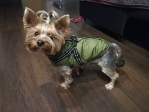 Cozy Water-Resistant Jacket