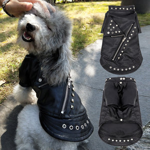 Super Cool Pet Leather Jacket