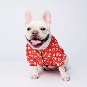 Stylish Dog Bomber Jacket