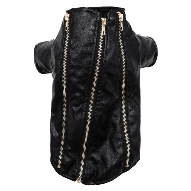 Stylish Designer Black Zipper Leather Jacket