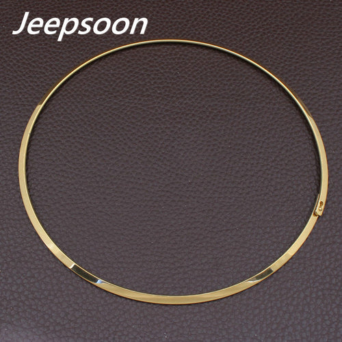 Stainless Steel Chokers Necklace Hot Fashion Round Silver Gold Color Jewelry For Women - TheRightBuy4Women.com