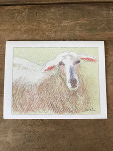 Sheep - Notecard Set of 4