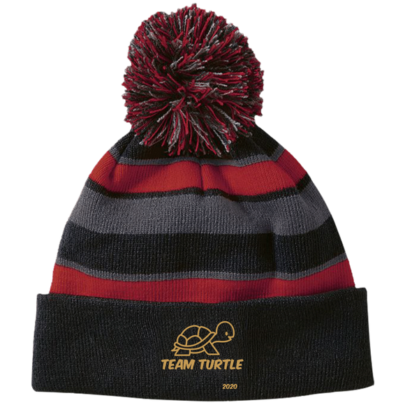 Team Turtle 2 Holloway Striped Beanie with Pom