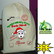 Santa Paws Dog Christmas Santa Sack