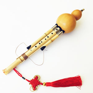 Chinese Handmade Hulusi Golden Bamboo Gourd Cucurbit Flute 7&9 Holes Musical Instrument Key of bB/C/F/G with Case Flauta Dizi