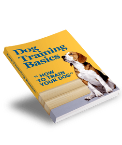 The KedStore ebook Dog-Training-Basics