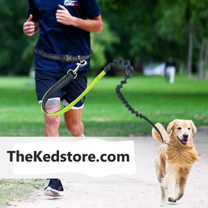 The KedStore Running Leash For Dogs with Elastic Waist Belt Strap for jogging, Hiking and Walking
