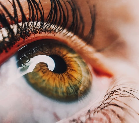 closeup of human eye with lashes looking up
