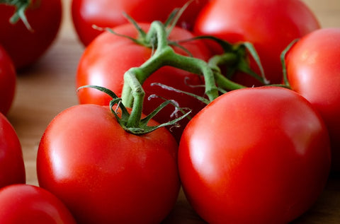 red tomatoes closeup