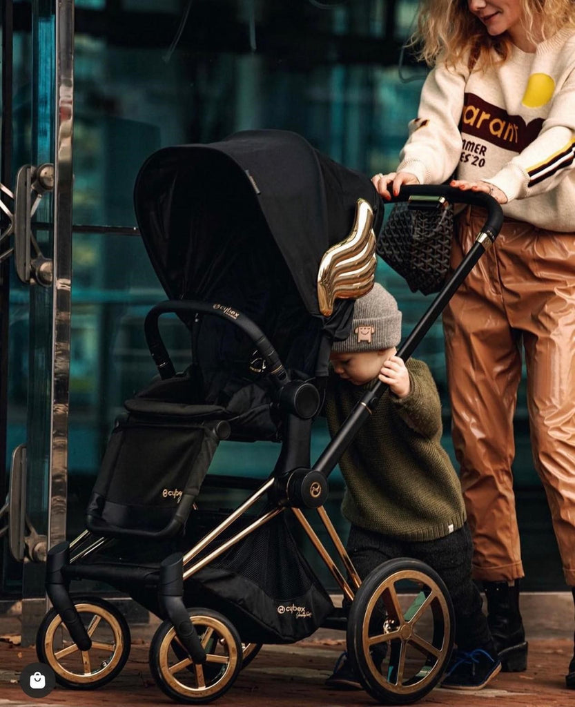Why Strollers are essential for Babies?