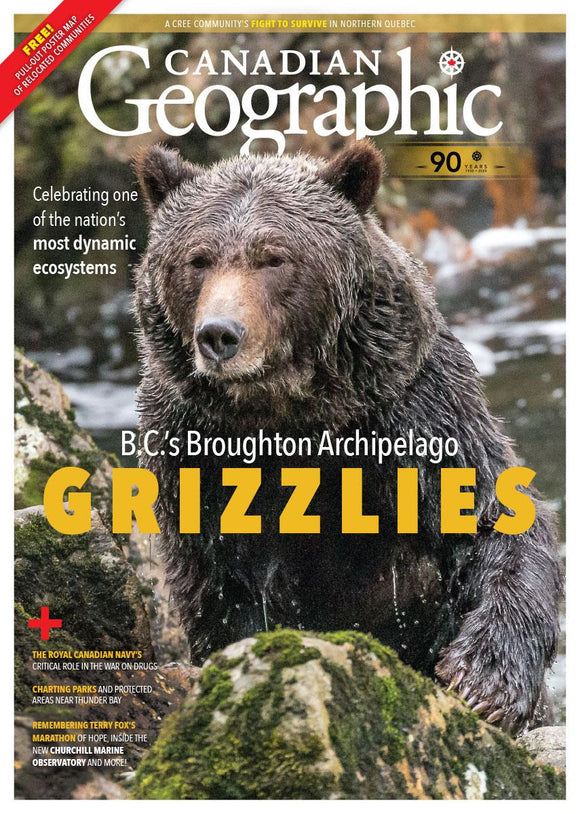 Mar/Apr 2020 | B.C.'s Broughton Archipelago Grizzlies