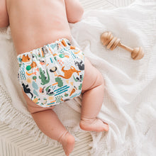 Load image into Gallery viewer, NEW Baby BeeHinds Magicall all-in-two Cloth Nappy with Velcro - Bush Buddies