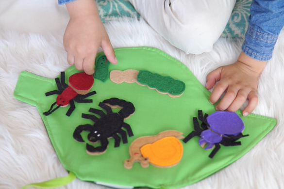 Crawling Bugs Assembly Kit