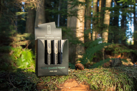 Flint CBD vape pens in a Pacific Northwest forest