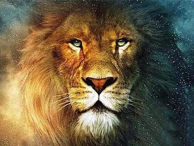 DIY Diamond Painting Kit - Lion King-CJ-3193-Full Square 20X30cm-Diamond Art Painter