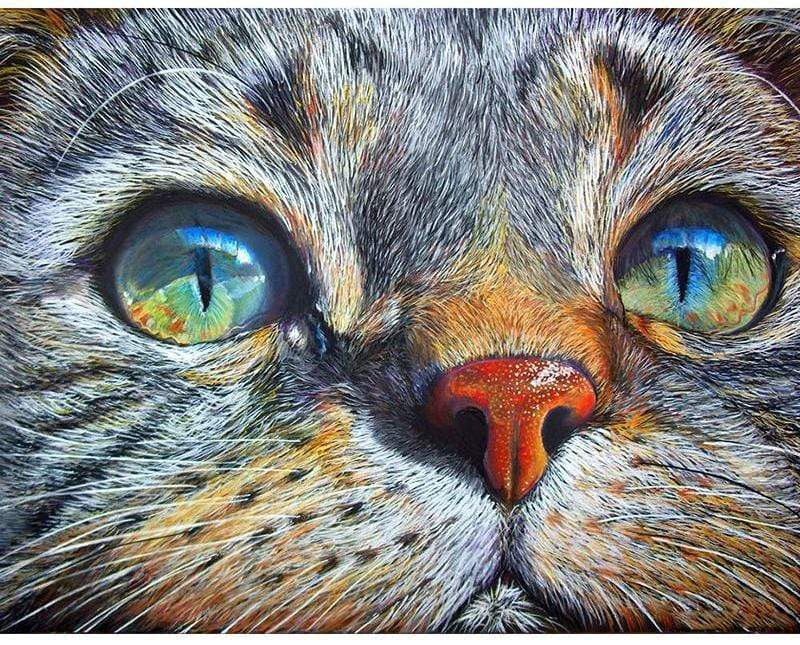 """In the Eyes of a Cat"" 