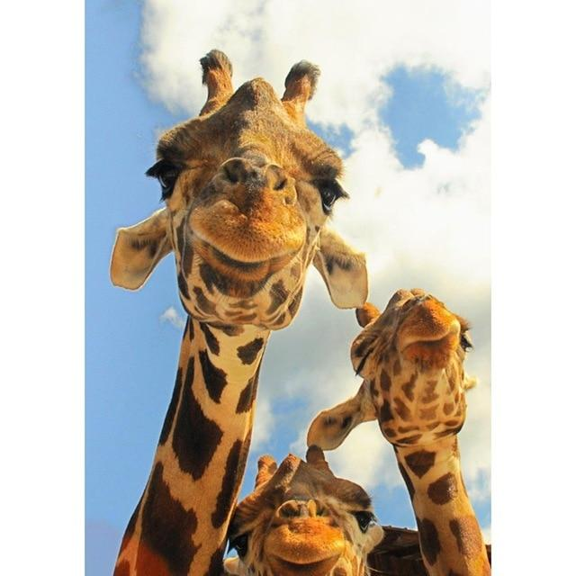 DIY 5D Diamond Painting Kit - Giraffe
