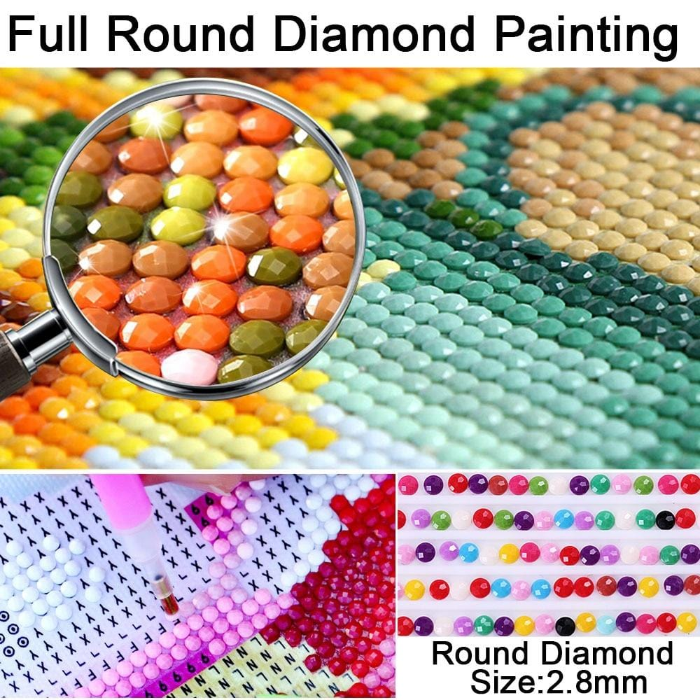 DIY 5D Diamond Painting Kit -  Cross Stitch Craft Square Resin Diamond Embroidery